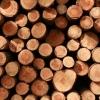 Pine wood...